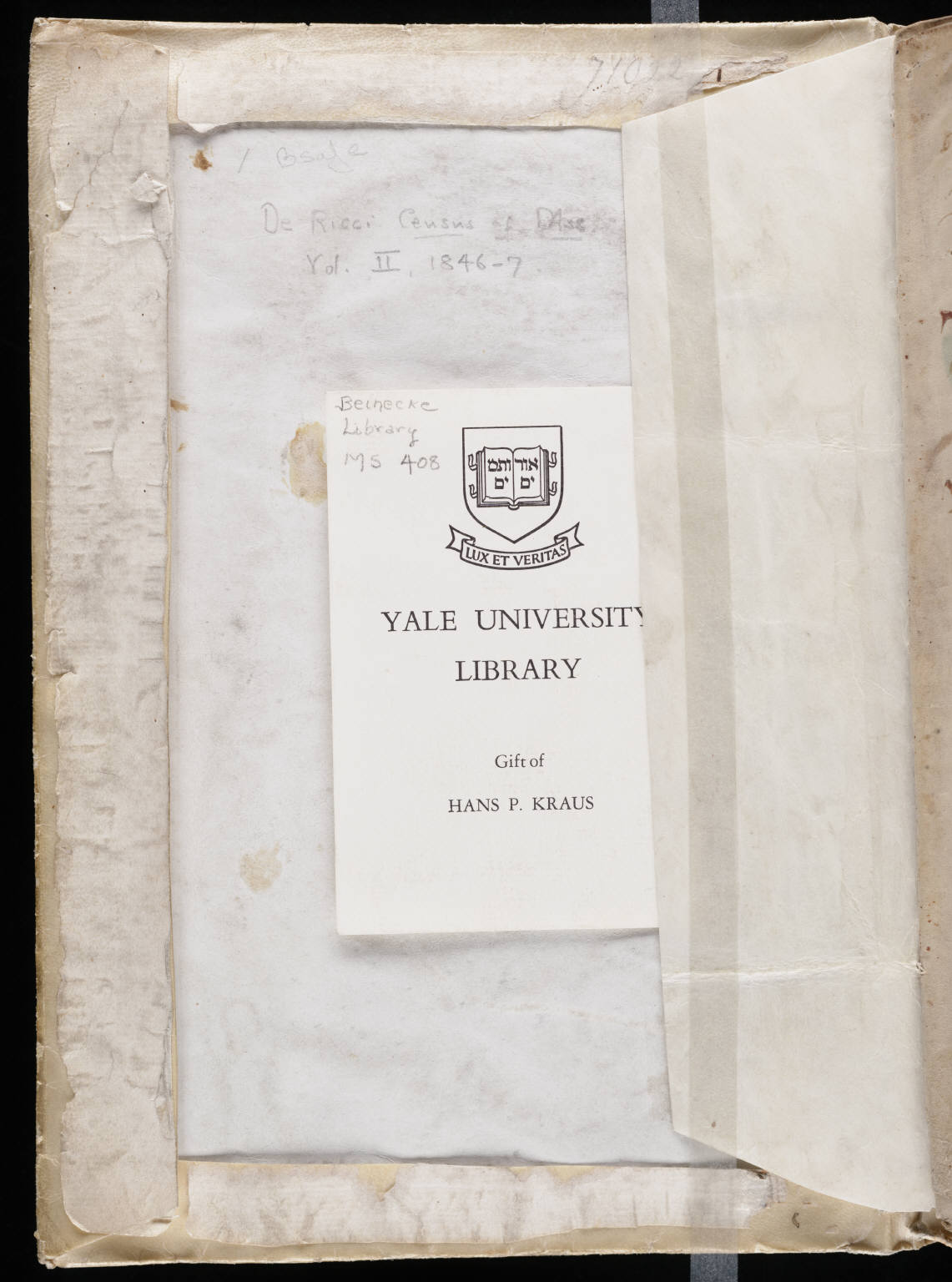 the voynich gallery the complete manuscript 1