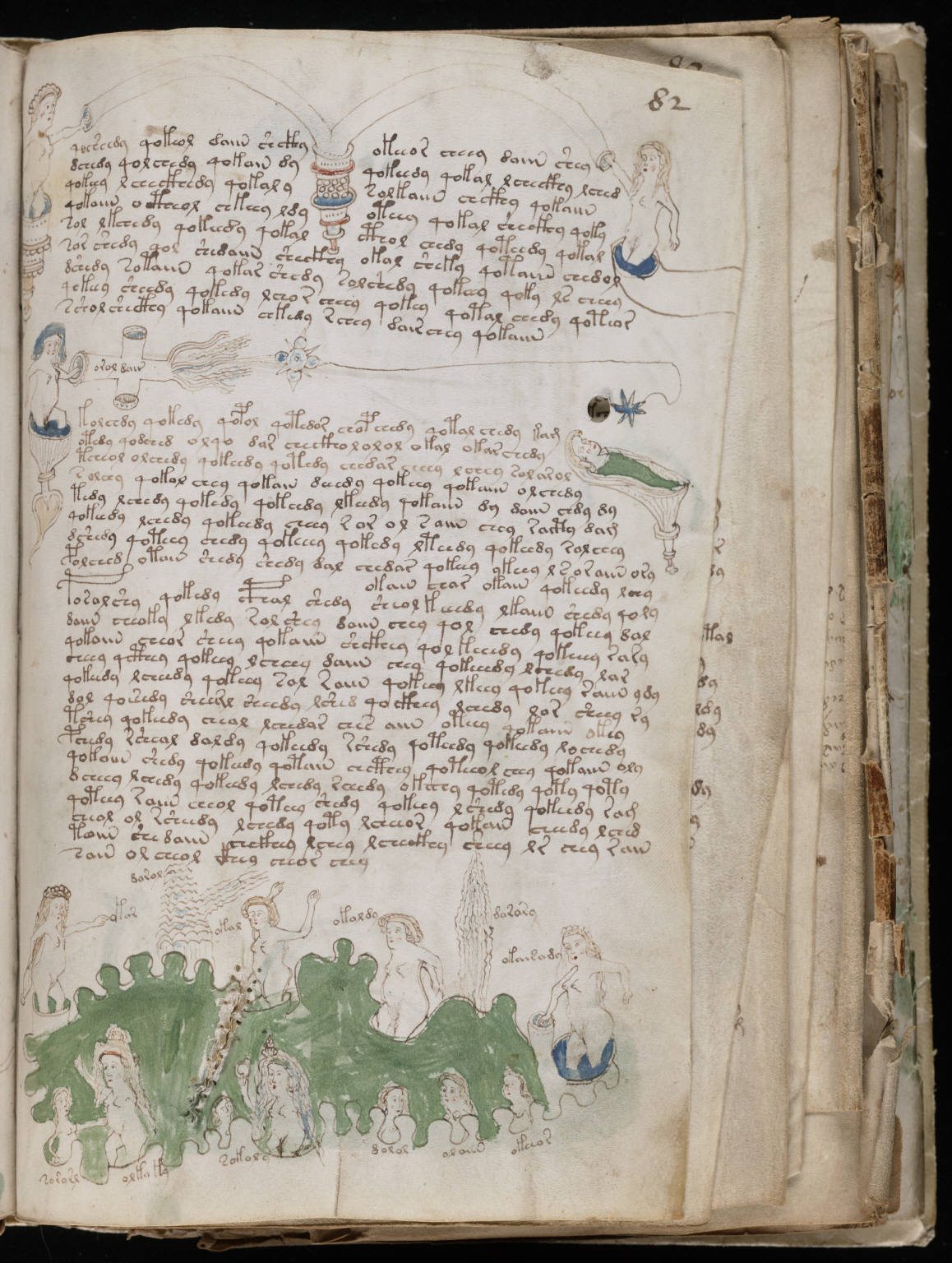 the voynich manuscript essay When wilfrid voynich first saw the manuscript for the history of research of the voynich ms we will have to start by going back the essay by zyats et.
