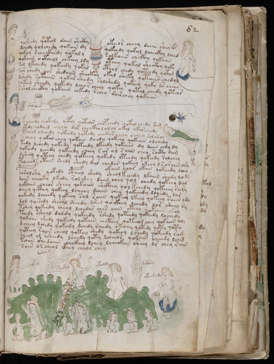 Copy of The Voynich Manuscript The Voynich Manuscript