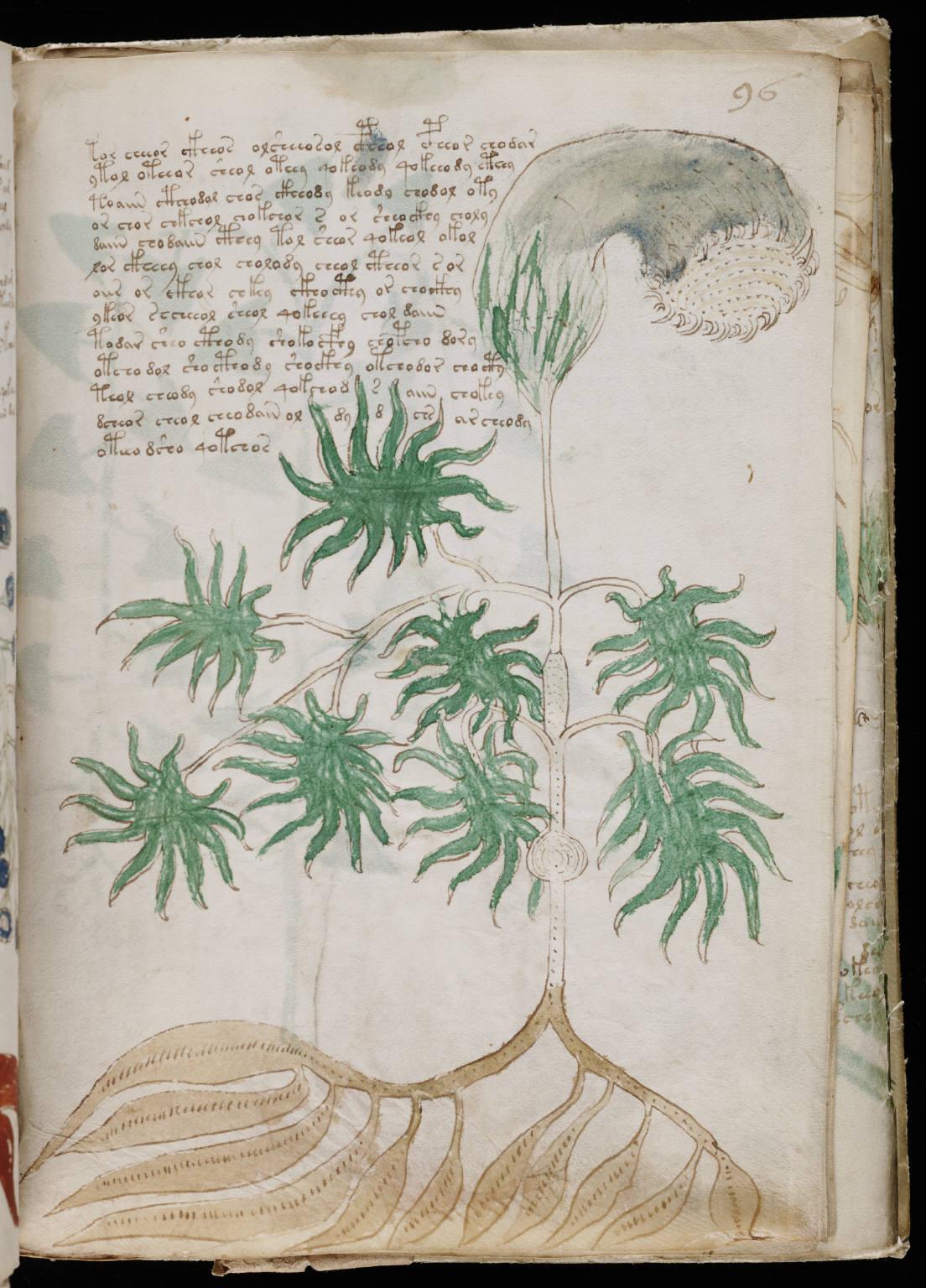 manuscrito171.jpg
