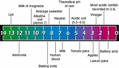 Water, Alkalinity & pH