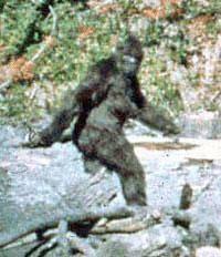 running gorilla silhouette