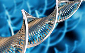 genetically altering our future essay Genetic engineering essaysthe science of genetic the future of genetically engineered foods is a problems can occur when genetically altering an.