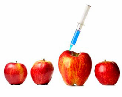 the dangers of genetically modified foods Visit almost any anti-gmo website and you will find alarming headlines about the alleged dangers of gmo foods they kill pigs, cows and sheep on farms and in lab studies.