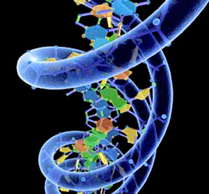 Artificial Dna Could Power Future Computers