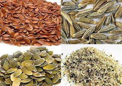 plantas con semillas comestibles