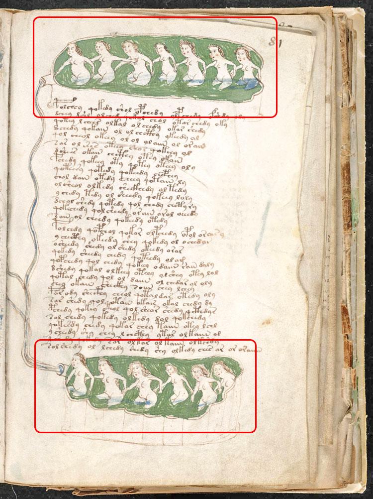 Voynich Manuscript Translation The Voynich Manuscript