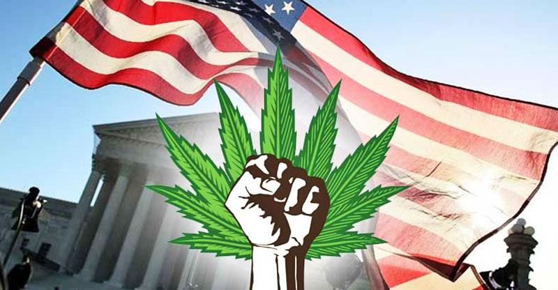 Image result for war on weed