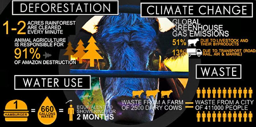 El Cambio Climatico, nadie hace nada. Nadie habla de esto.