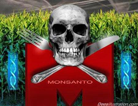 Los peligros de Monsanto Monsanto146_01