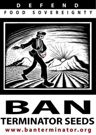Los peligros de Monsanto Monsanto146_15_small