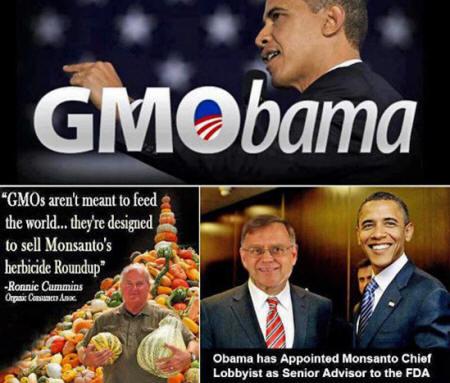 Los peligros de Monsanto Monsanto146_18_small