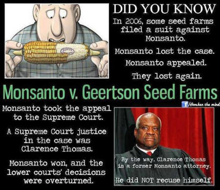 Los peligros de Monsanto Monsanto146_19_small