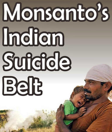 Los peligros de Monsanto Monsanto146_20_small
