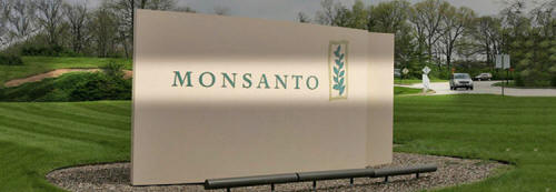 Los peligros de Monsanto Monsanto161_02_small