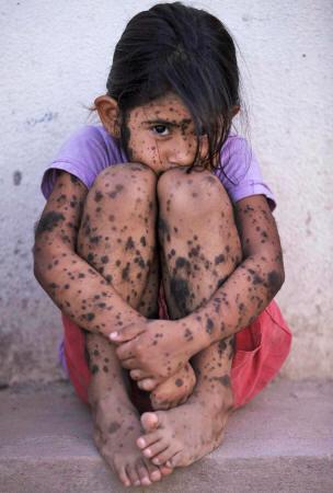 Los peligros de Monsanto Monsanto166_06_small