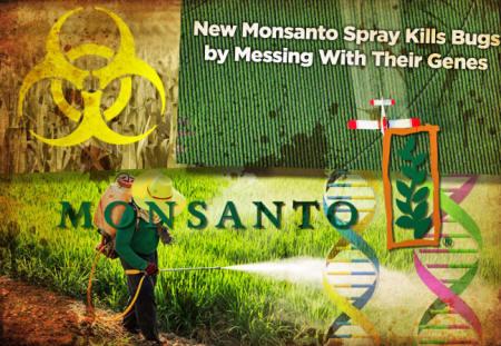 Los peligros de Monsanto Monsanto171_01_small