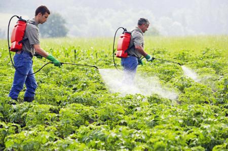 Los peligros de Monsanto Monsanto171_02_small