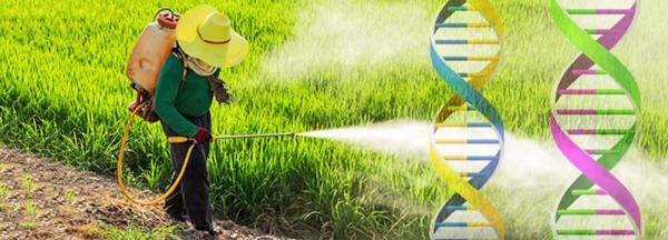Los peligros de Monsanto Monsanto171_10_small
