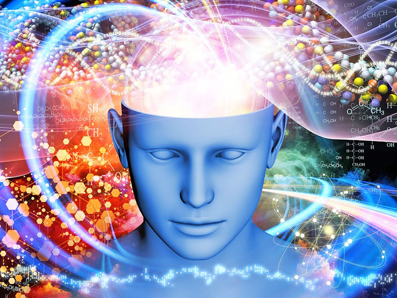 Do Entities from Another Universe Inhabit the Brains of