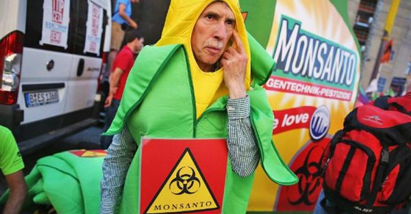 Los peligros de Monsanto Monsanto197_01_small