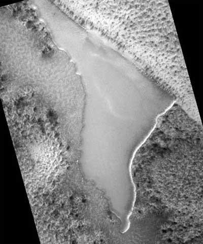 NASA Mars Photo Leaked - Wood Found on Mars!