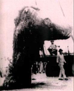 20th Century Dinosaurs
