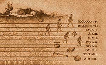 Evolution Heresies Herejias En La Evolucion