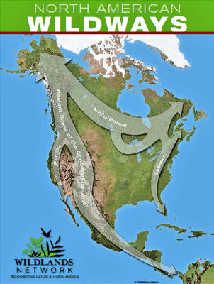 """domination of north america """"the continent is not wide enough for us both"""" library of congress a new map of north america, with the british, french, spanish."""
