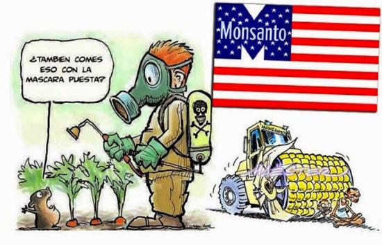 Los peligros de Monsanto Globalfood90_03_small