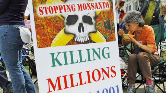 Los peligros de Monsanto Globalfood90_07_small